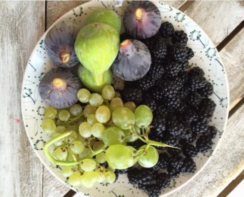 empresas de alimentacion frutas de otoño